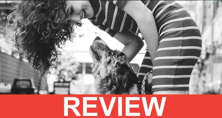 Bark Begone Reviews 2020