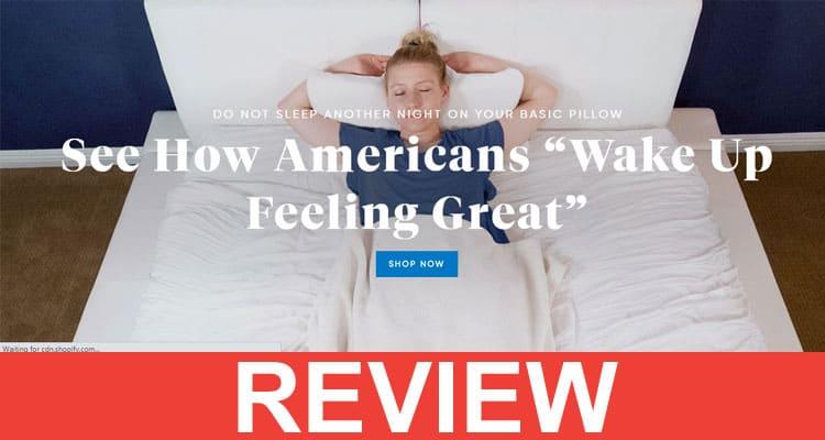 Sutera Pillow Reviews 2020